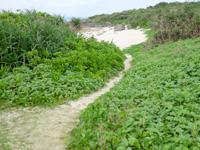 来間島のムスヌン浜 - ビーチ入口