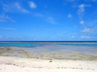 黒島の仲本海岸 - 海は広いがビーチは狭い?