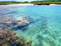 黒島の仲本海岸 - インリーフはまさに天然プール