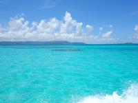 黒島の黒島港沖の海 - サンゴの根もまた良いアクセント