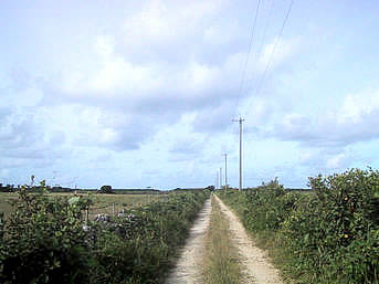 黒島灯台への道