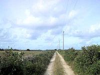 黒島の黒島灯台への道