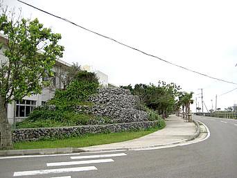 黒島小中のプズマリ