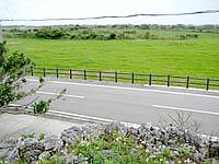黒島の黒島小中のプズマリの写真