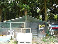 黒島のはとみコッコ'sハウス(閉鎖)