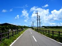 黒島の黒島絶景ロード/メインストリート - 黒島港側には牛のセリ施設有り