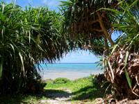 黒島の黒島南端の海 - 灯台とは別の入口から入ろう!
