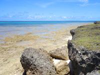 黒島の黒島南端の海 - ビーチに降りれないことはないけど・・・
