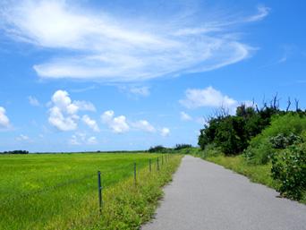 黒島の仲本海岸と灯台を繋ぐ道「仲本海岸から灯台までの道はまさに「爽快」」