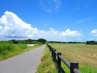 黒島の仲本海岸と灯台を繋ぐ道 - 灯台側から仲本海岸側を見る