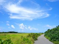 黒島の仲本海岸と灯台を繋ぐ道 - とにかくのどかな道
