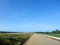 滑走路脇の一本道