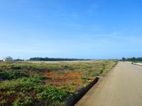 南大東島の滑走路脇の一本道 - 滑走路との間にフェンスが無い?