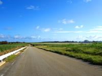 南大東島の滑走路脇の一本道 - 空港のおかげで景色が開けている