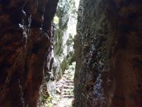 南大東島のバリバリ岩 - 最下部はただならない雰囲気かも?
