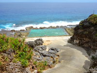 海軍棒プール/南大東島東海岸植物群落