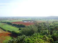 南大東島の日の丸山/日の丸展望台 - 空港側・東側の景色