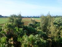 南大東島の日の丸山/日の丸展望台 - 南側の景色はイマイチ