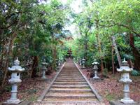南大東島の大東神社/ダイトウオオコウモリのねぐら - ダイトウオオコウモリはいるか?