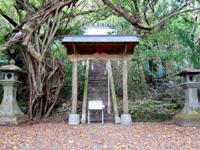 南大東島の大東神社/ダイトウオオコウモリのねぐら - 参道の階段