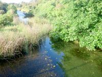 南大東島の大池 - 近くで望める場所はほとんど無い・・・