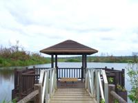 南大東島の瓢箪池/月見池/月見橋 - 池の向こうに製糖工場が見える