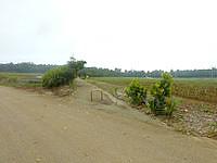 南大東島のフロンティアロード - 市街地付近は道路で分断される場所も