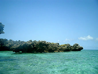 水納島のカモメ岩「カモメ岩まで泳いでいけます」