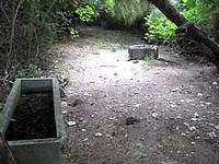 水納島の奥の丸い古井戸 - 四角いものと丸い井戸が怖さを引き立てます