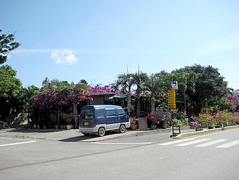 宮古島のガーデンレストラン シギラ「緑豊かなお店です」