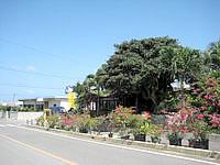 宮古島のガーデンレストラン シギラ - 幹線道路に面しています