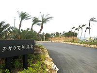 宮古島のシギラ天然温泉 奇跡の泉