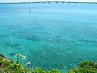 宮古島の西平安名崎 - テッポウユリもあるかも?