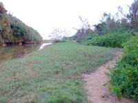 宮古島のクウラ水辺公園/久浦水辺公園 - ビーチまではこんな感じのあぜ道を歩きます