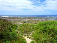 米須海岸/大度海岸の穴場の入口