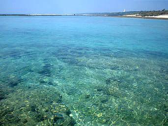 大度海岸の海の色