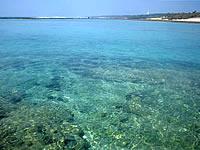 大度海岸/ジョン万ビーチの海の色
