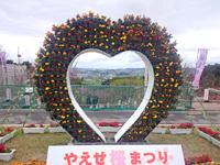 南部の八重瀬公園/八重瀬岳 - 2月にやえせ桜まつりも開催