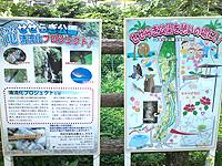 南部のせせらぎ公園/豊見城の滝 - 公園と滝をいろいろ活用模索中