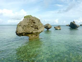 大神島の奇岩/のこぎり岩/ノッチ「大神島のノッチは見事です」