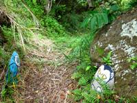 大神島のプナイパーの浜への道 - 横断道にあった人形は奥に移設