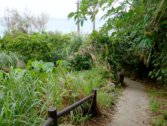 大神島の遊歩道入口