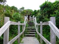 大神島の遠見台への道 - 頂上近くは景色が開けます