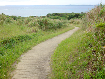 島横断の遊歩道
