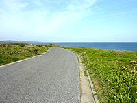 沖永良部島の島北側の道の写真