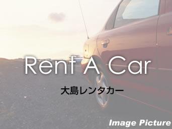 【和泊・知名】大島レンタカー