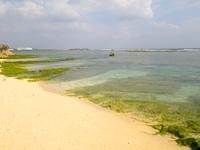 沖永良部島のうぐら浜/御倉浜