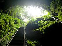奄美諸島 沖永良部島の住吉暗川/クラゴウの写真