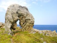 沖永良部島のカルスト地帯の岩々