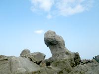 沖永良部島のカルスト地帯の岩々の写真